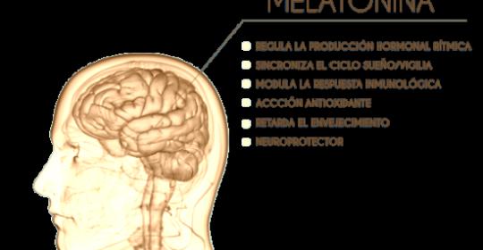 Melatonina y su efecto antidepresivo